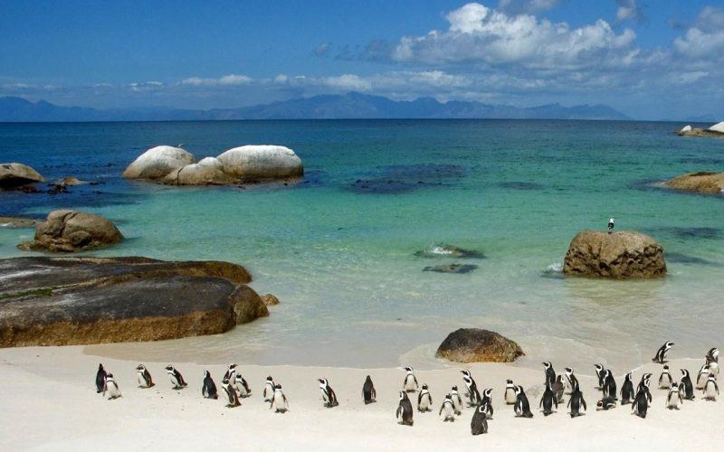 Sudafrica ( Repubblica Sudafricana)