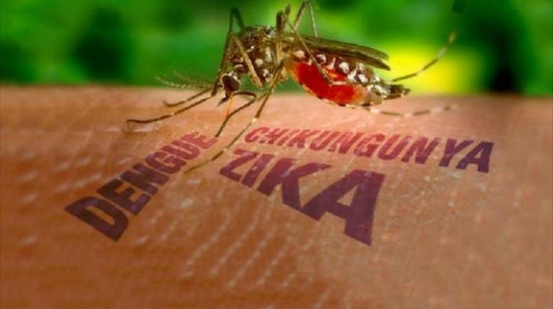The difference between Zika and the others